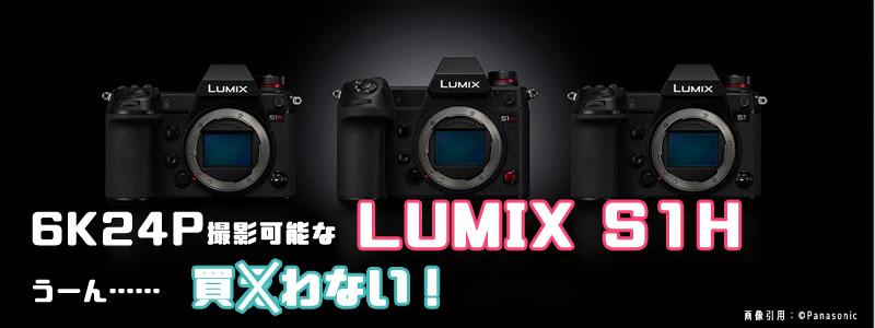 Lumix S1H 不満