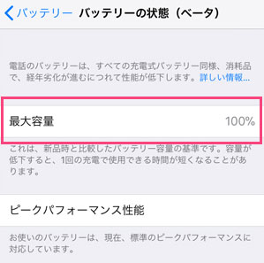 iPhone オークション 確認事項