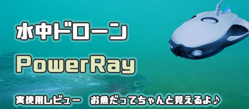 Power ray レビュー