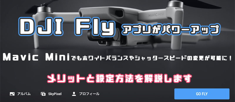 DJI Fly マニュアル撮影 Mavic MIni