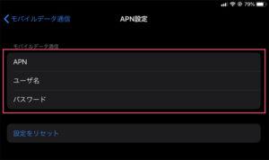 神プラン APN設定 iOS